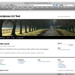 "Wordpress 3.0 - Standardtheme ""Twenty Ten"""